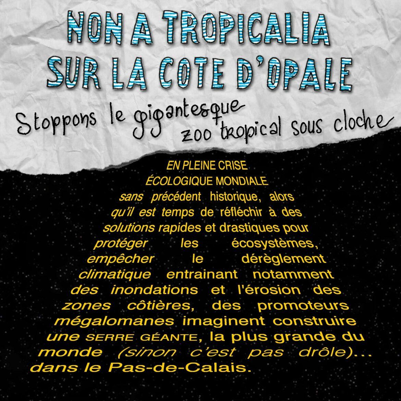 Comment présenter Tropicalia en quelques croquis !